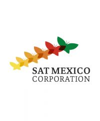 SAT Mexico DMC