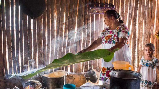 Yucatán – Newsletter 03